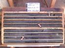 LTP-113-37-38-WET